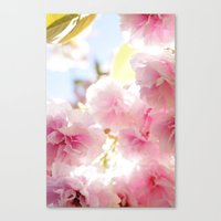 cherry blossom Canvas Prints featuring Cherry Blossom by 2sweet4words Designs
