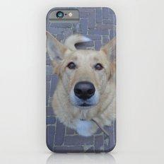 Treat? iPhone 6s Slim Case