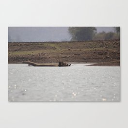Wood in the River Canvas Print