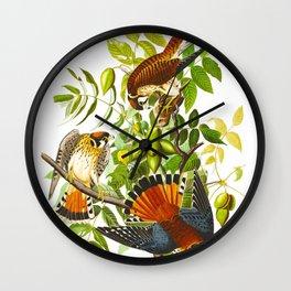 Sparrow Vintage Scientific Bird & Botanical Illustration Wall Clock