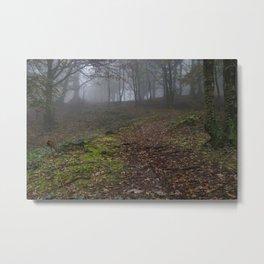Path Through The Mist Metal Print