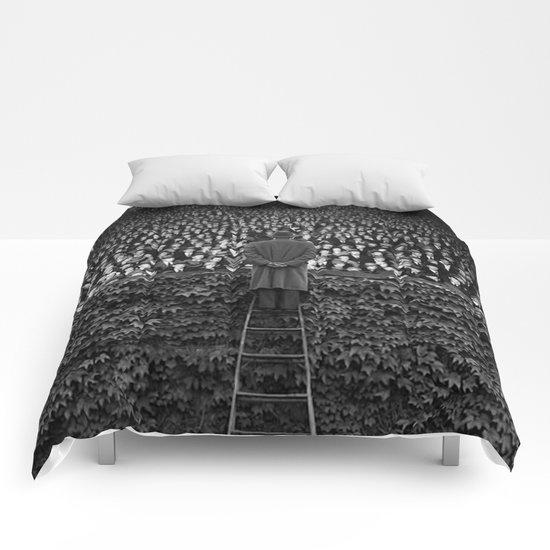 Followers Comforters