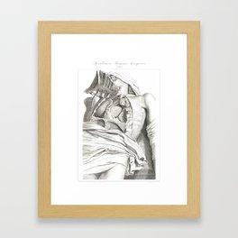 Human Anatomy Art Print LUNG AORTA HEART Vintage Anatomy, doctor medical art, Antique Book Plate, Me Framed Art Print