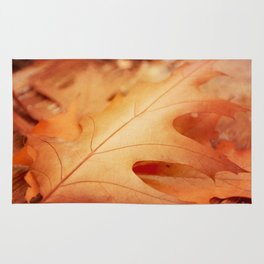 AFE Autumn Leaves, Nature Photography Rug