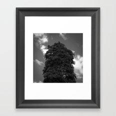 BLCKBTY Photography 011 Framed Art Print