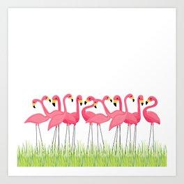 Cuban Pink Flamingos Art Print