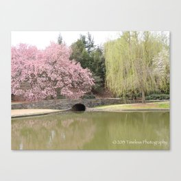 Nature Bridge Canvas Print