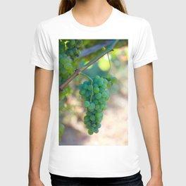 Sauvignon Blanc Grapes on the Vine T-shirt