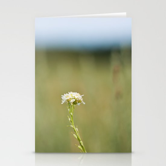 Flower in the Field Stationery Cards