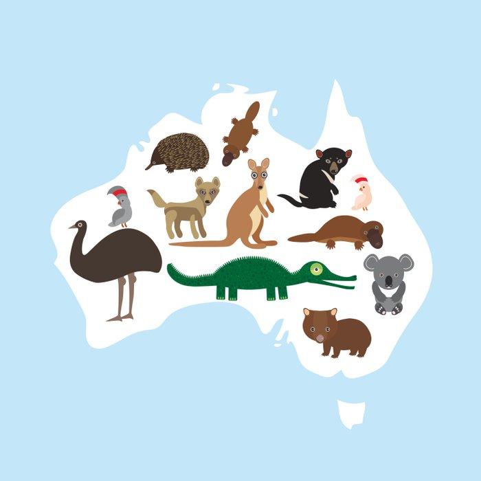 map of Australia. Echidna Platypus Emu Tasmanian devil Cockatoo Wombat crocodile kangaroo dingo Comforters