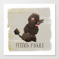 poodle Canvas Prints featuring Poodle by 52 Dogs