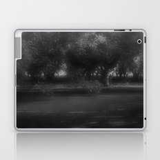 faery garden Laptop & iPad Skin