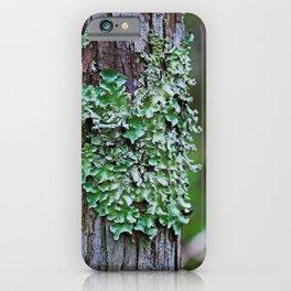 Likin' the Lichen iPhone Case