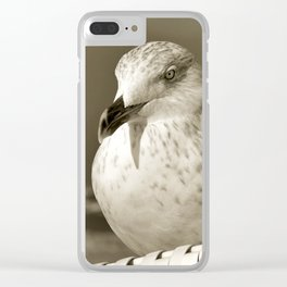 SEAGULL on the BALTIC SEA Clear iPhone Case