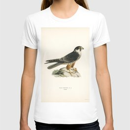 Eurasian Hobby (Falco subbuteo) illustrated by the von Wright brothers T-shirt