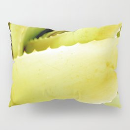 Spines of Nature Pillow Sham