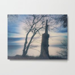Dreamy and persistently fall to sleep Metal Print