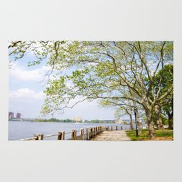 Roosevelt Island Walk Rug