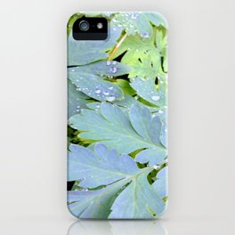 Dew Drops on Leaves iPhone Case
