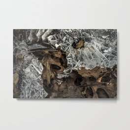 Fallen Leaves Frozen in Ice Metal Print