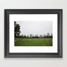 Sheep Meadow, Central Park, NYC Framed Art Print