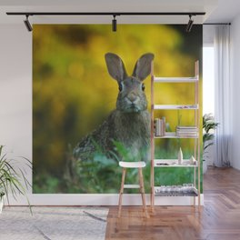 Rabbit | Lapin Wall Mural