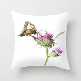 Scarce Swallowtail Butterfly Resting On Thistle Flower Throw Pillow