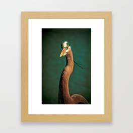Close-up of a Great Blue Heron Framed Art Print