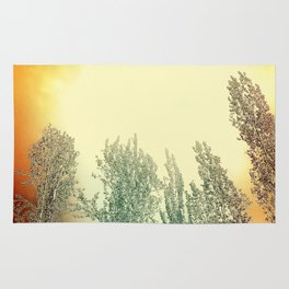 Autumn Poplars, Sunlight Dreaming About You Rug