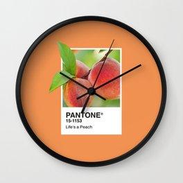PANTONE SERIES – PEACH Wall Clock