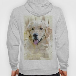 Golden Retriever (Low Poly) Hoody