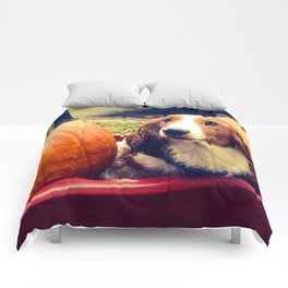 two pumpkins and an daschund Comforters