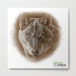 Brown Wolf Metal Print