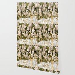 Canal side grass Wallpaper