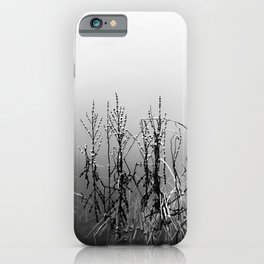 Echoes Of Reeds 2 iPhone Case