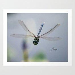 Dragonfly Smiles Art Print