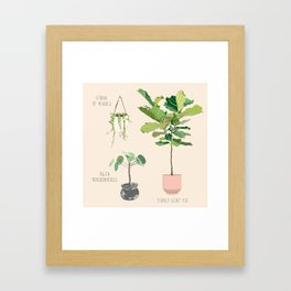 Dream Plants Framed Art Print