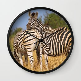 Life of the Zebras, Africa wildlife Wall Clock