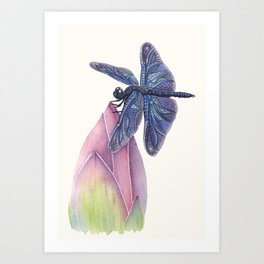 Dragonfly & Lotus Art Print
