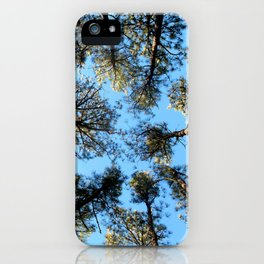 Watercolor Tree, Under, Conifer 01, Janes Island, Maryland iPhone Case