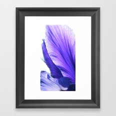 Blue tongue Framed Art Print