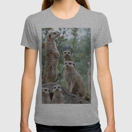 Meerkat 20140905 T-shirt