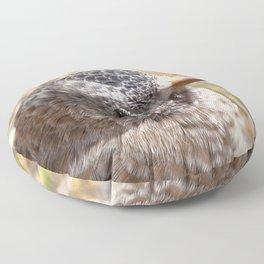 Watercolor Bird, Endangered Brown-capped Rosy Finch 01, AVC, RMNP, Colorado Floor Pillow