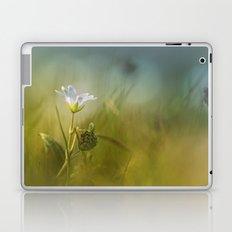 Cerastium fontanum subsp. vulgare  Laptop & iPad Skin
