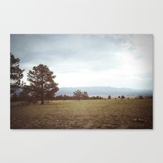 set free::buena vista, co Canvas Print