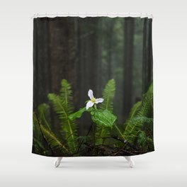 White Flowered Trillium Ovatum on the Edge of a Ledge in Lush Green Oregon Forest Shower Curtain