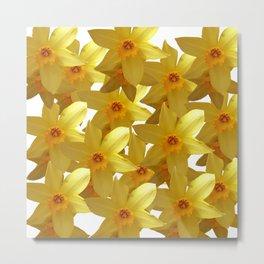 My Daffodils Metal Print