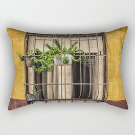 Casco Viejo Door Rectangular Pillow