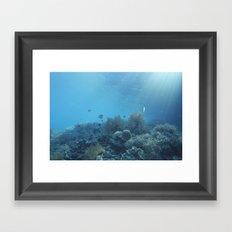 Shadow reef 2 Framed Art Print