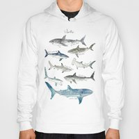 sharks Hoodies featuring Sharks by Amy Hamilton